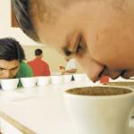 Retoman búsqueda del mejor café local
