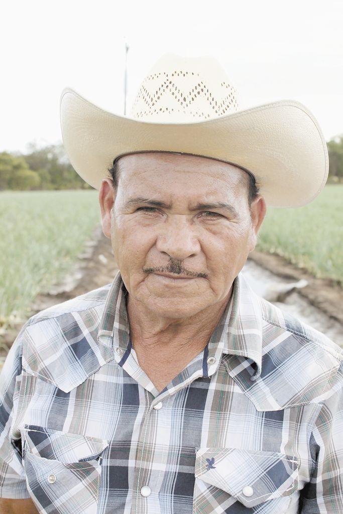 """""""A finales de este mes  y principios de febrero  ya tendremos unas 35 manzanas de cebolla en cosecha en todo el Valle de Sébaco. Esperamos que lo que hemos  perdido tal vez podamos reponerlo con la venta  de las primeras cebollas que arranquemos"""". Victorino Díaz Chavarría, productor de cebollas en Sébaco."""