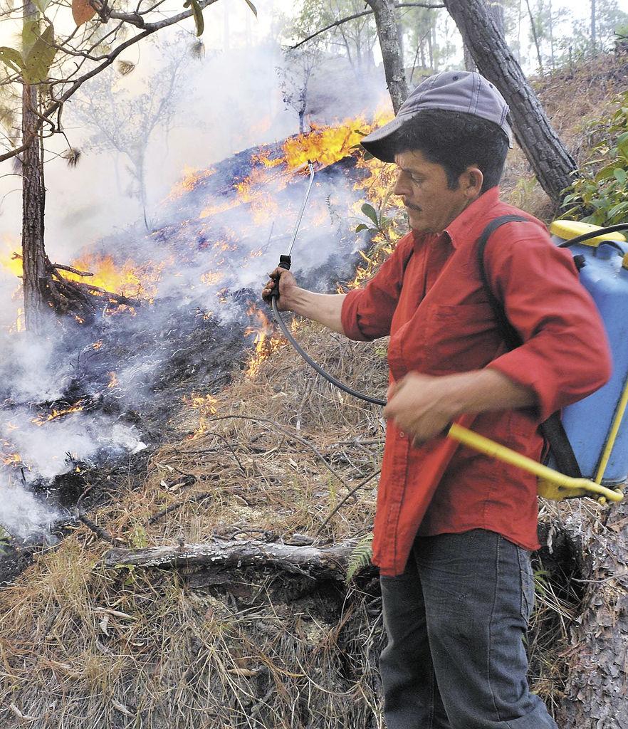 Un campesino del municipio  de  San Fernando, Nueva Segovia, trata de ayudar a sofocar el incendio forestal. LA PRENSA/G. MIRANDA