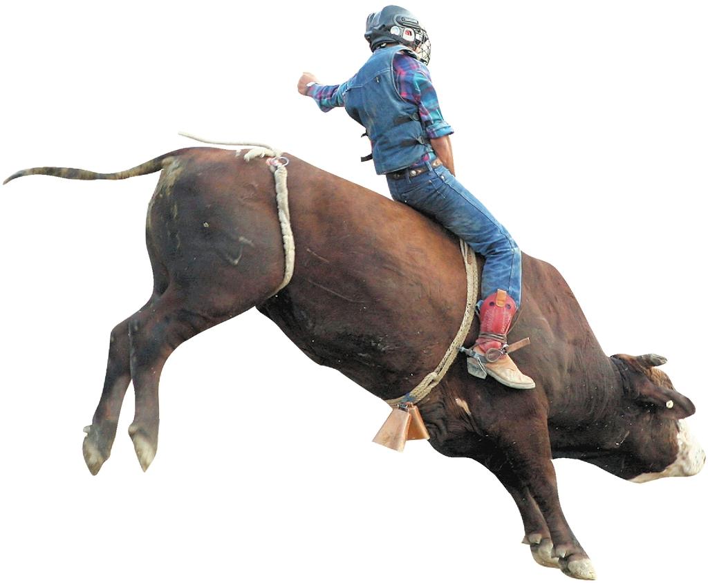 La lucha entre el toro y el hombre la prensa - Montadores de pladur en madrid ...