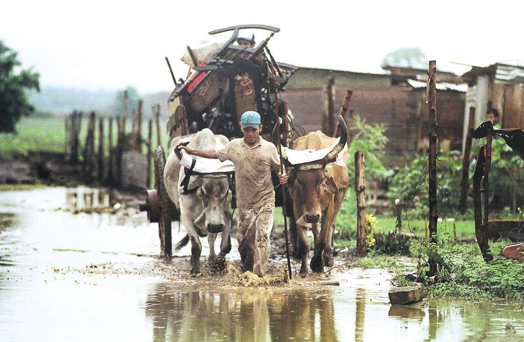 Los altos niveles  de pobreza que imperan en el país es un factor que inciden fuertemente en la reducida cultura de ahorro en Nicaragua. LAPRENSA/ARCHIVO
