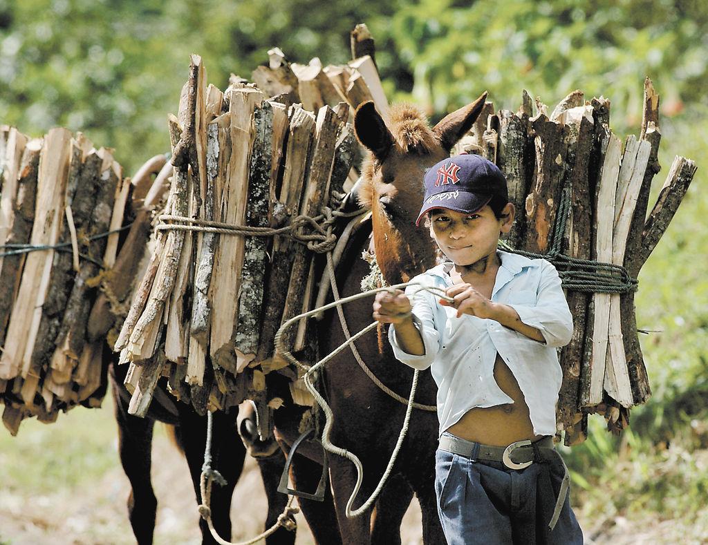 CA se compromete a erradicar el trabajo infantil