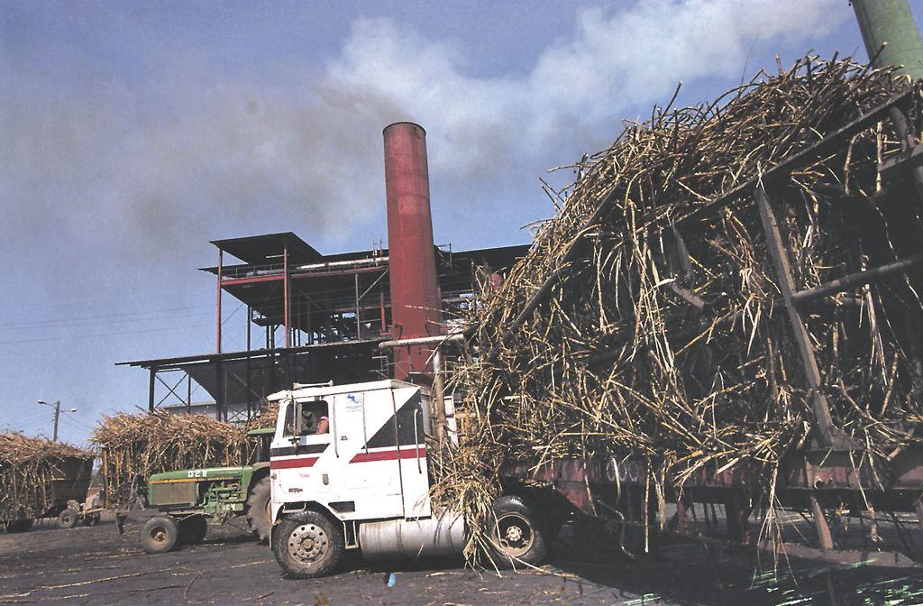 La zafra azucarera 2012-2013  aportará unos 462 millones de kilovatios hora de energía al interconectado del sistema nacional.  LA PRENSA/ARCHIVO