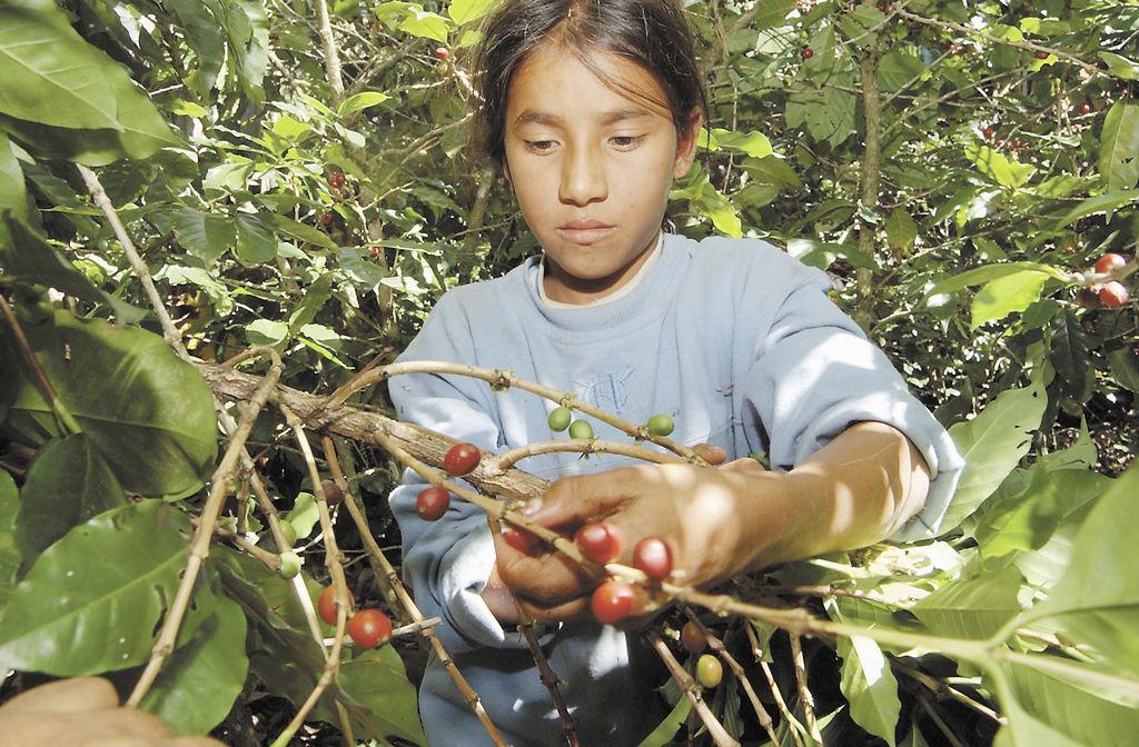 Niñez rural es la más vulnerable