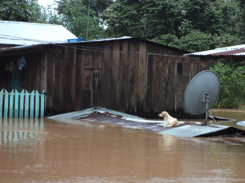 Nicaragua pide asistencia al PMA por inundaciones