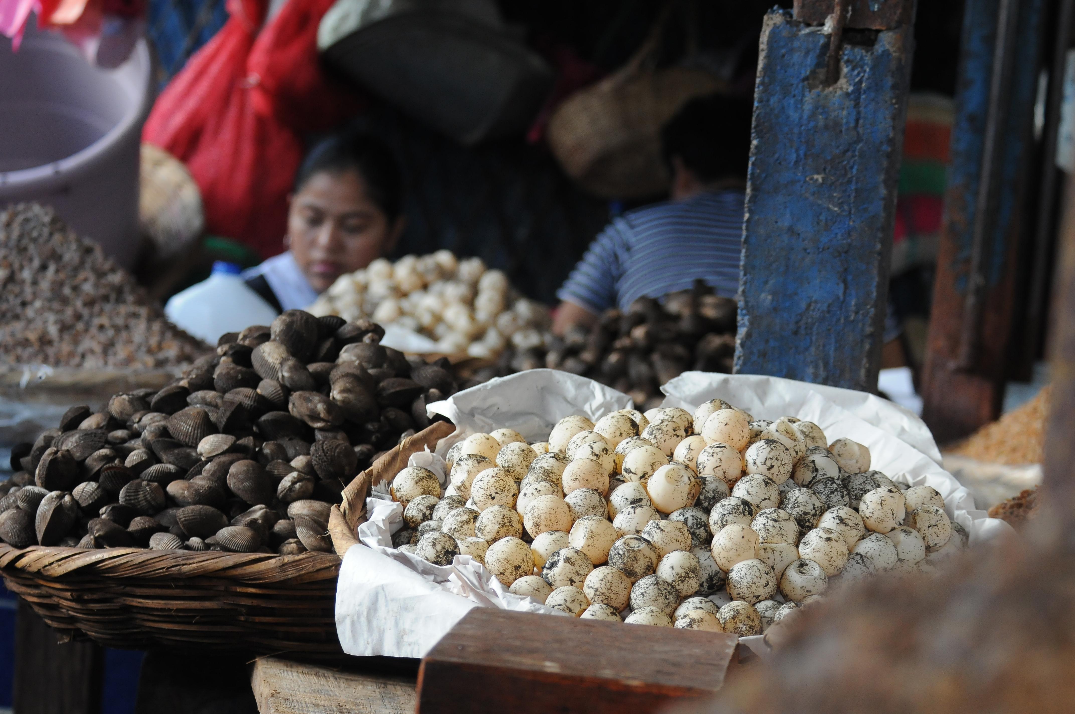 En el mercado Oriental,  los huevos de paslama son vendidos por docena, aún cuando es ilegal, según la Resolución Ministerial 043-2005. LA PRENSA/ M. ESQUIVEL