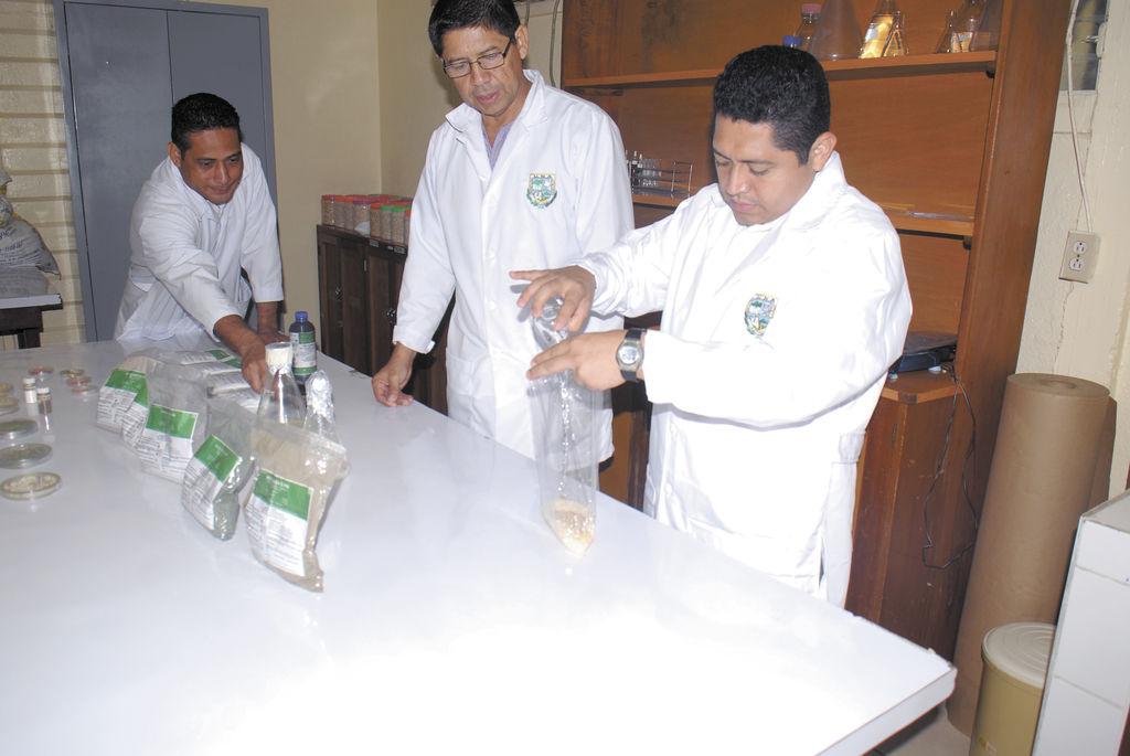 El Laboratorio de Bioplaguicidas reproduce hongos biológicos  para atacar las plagas que afectan principalmente a los cultivos. LA PRENSA/ R. FONSECA