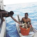 """Pesca debe frenar a  los """"mojados"""""""
