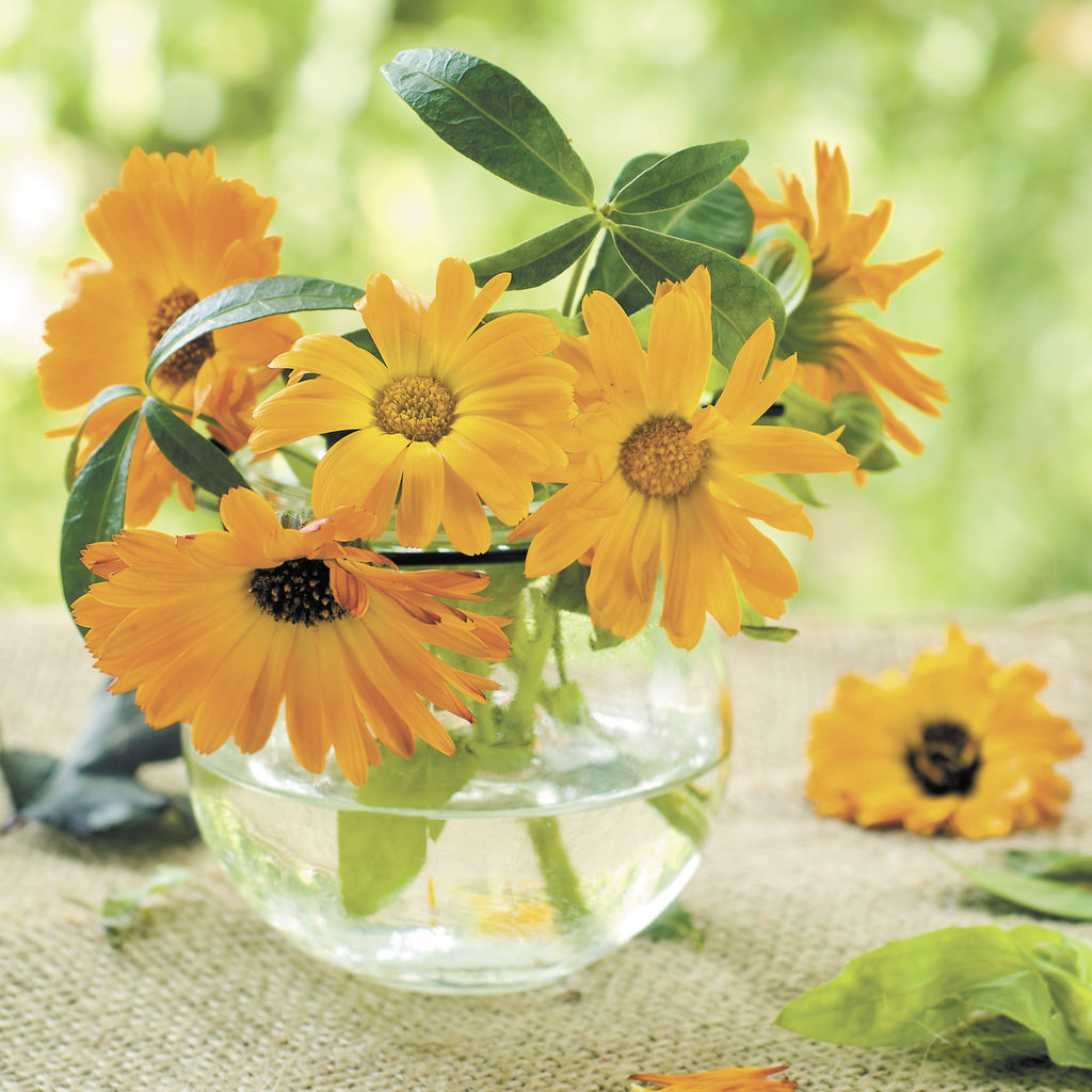 Inspiraci n floral en la decoraci n la prensa for Se necesita jardinero