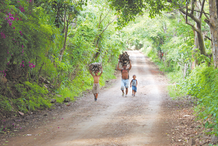 Más de la mitad de la población en Nicaragua usa leña para cocinar