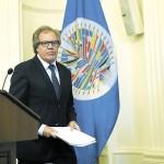 Delegación de la OEA vendrá a farsa electoral