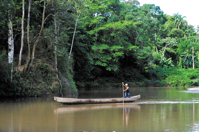 Nicaragua, el país con más fuentes de agua para consumo humano en Centroamérica,  se enrrumba a la destrucción acelerada de su riqueza hídrica. Los ríos, lagos, lagunas, manantiales y demás fuentes, están siendo afectados por la deforestación de la cual no se salva ni Bosawas, la mayor reserva de biosfera del país.  La Prensa/ Archivo