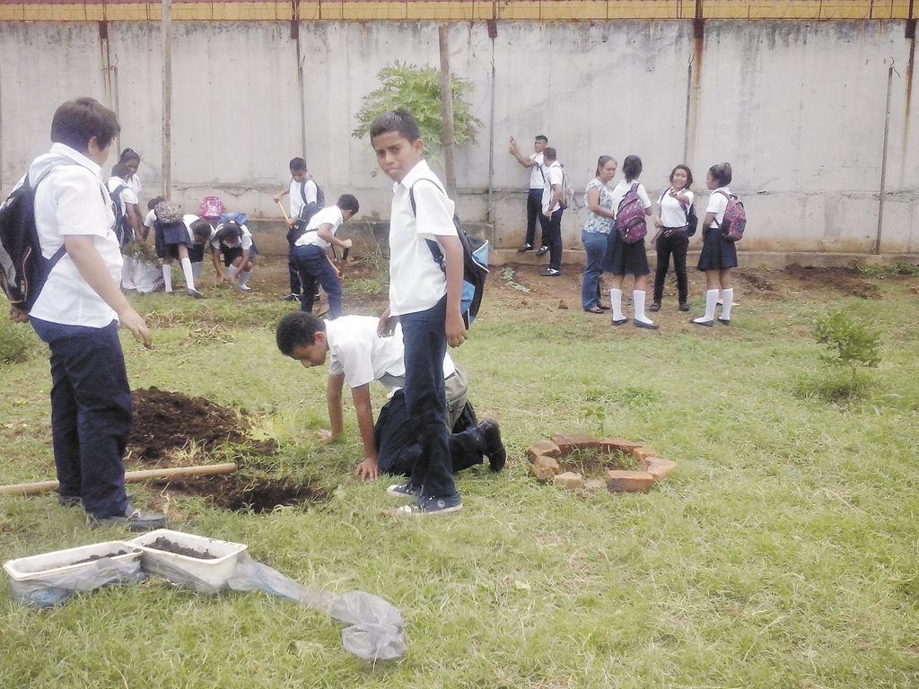 Aulas se cuidan del dengue