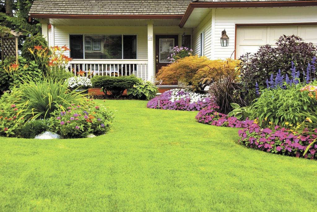 Llene de vida su jard n con rboles y plantas la prensa for Arboles de flores para jardin