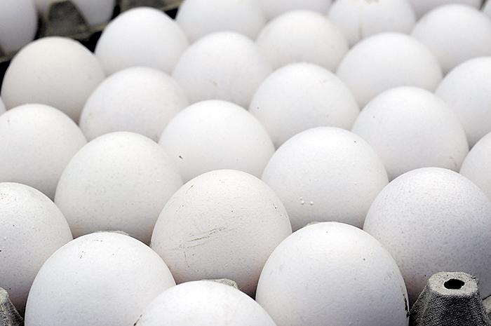 Huevo al alcance del bolsillo de la población