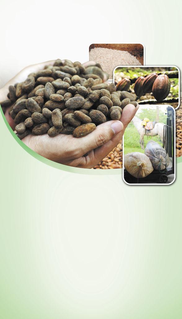 Cacao nica se posiciona en París