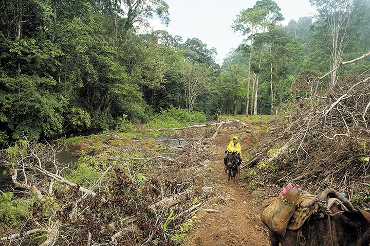 En este trecho angosto fueron emboscados el 16 de agosto del año en curso los cinco policías destacados en Nueva Guinea. LA PRENSA/J. FLORES