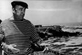 """Aparece """"Piedras de Chile"""", un libro inspirado en los poemas de Pablo Neruda"""