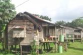 Banco Mundial dice que Nicaragua es de los que más crecerá