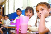 Minsa fumigarán las escuelas antes del inicio del año escolar 2016