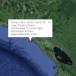 Nuevos sismos en el pacífico de Nicaragua