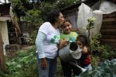 Un huerto orgánico familiar con poca tierra y agua