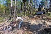 Jaime Incer Barquero: Proteger los bosques para tener agua