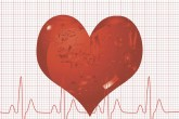 Crean un corazón con células iPS