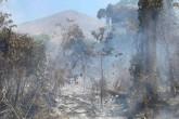 Fuego arrasa reservas en Chinandega y Managua