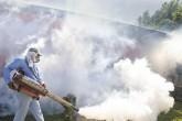 Certifican vacuna contra el dengue