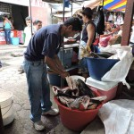Pescado caro en mercado de Diriamba