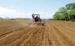Algunos productores han optado por preparar la tierra  para esperar a que el invierno se instale y comenzar la siembra. LA PRENSA/ARCHIVO Algunos productores han optado por preparar la tierra  para esperar a que el invierno se instale y comenzar la siembra. LA PRENSA/ARCHIVO