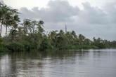 Costa Rica prepara cobro a Nicaragua por daño ambiental en humedal fronterizo