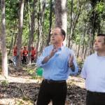 Podrían perderse 400 mil árboles en Nicaragua