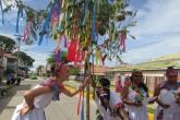 """Carnaval de Palo de Mayo """"marchito"""""""