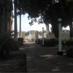 Botan desechos en cementerio de Granada