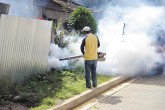 Dengue no da tregua en Jalapa