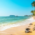 Trinidad y Tobago: belleza tropical