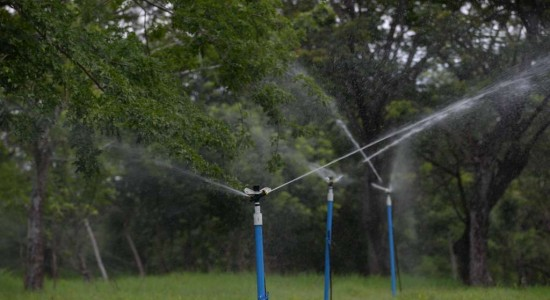 Biogás para elevar productividad en Nicaragua