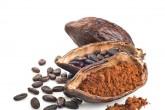 Consumir cacao evita riesgos cardíacos