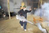 Aedes aegypti más peligroso
