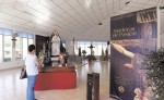 Los jóvenes católicos que realizan exposición sobre las advocaciones marianas  que tiene como fin dar a conocer más información la virgen María. LA PRENSA/ CORTESIA