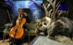 Music for Cats es el nombre del disco, y Teie prepara ya uno para caballos y otro para perros.LA PRENSA/AFP/ADRIAN DENNIS