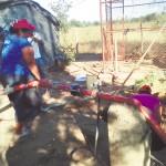 Mujeres instan a reforestar en El Viejo