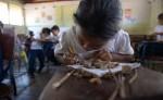 Según estadísticas del Instituto de Estudios Estratégicos y Políticas Públicas, Nicaragua invierte 12,271 millones de córdobas para atender a 1.6 millones de estudiantes. LA PRENSA/ARCHIVO